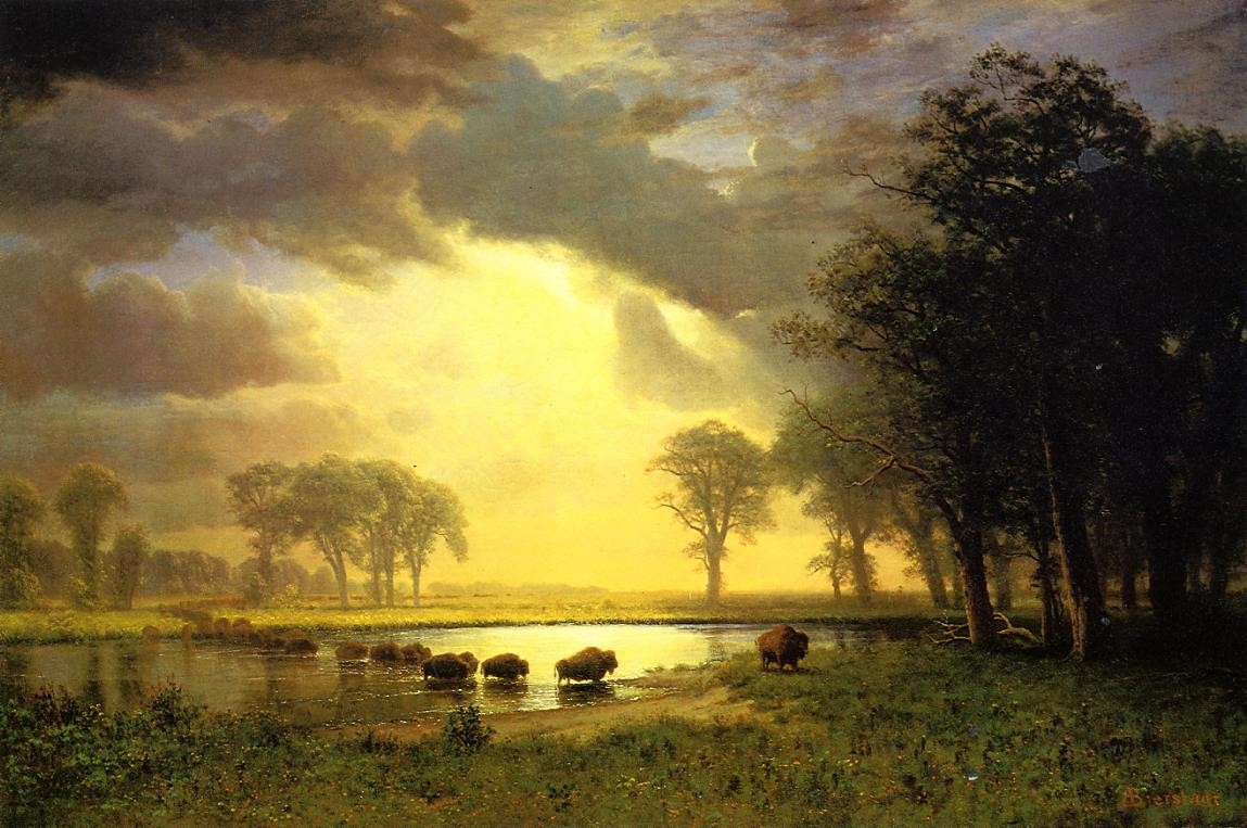 Albert Bierstadt The Buffalo Trail
