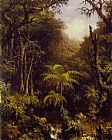 Martin Johnson Heade Brazilian Forest painting