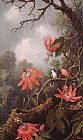 Martin Johnson Heade Hummingbird and Passionflowers painting