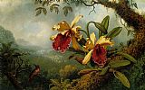 Still Life paintings - Orchids and Hummingbird by Martin Johnson Heade